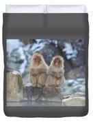 Two Monkeys Duvet Cover