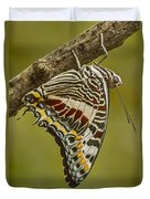Two Tailed Pasha Butterfly Duvet Cover