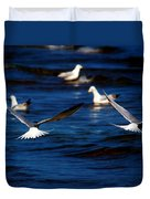 Two Terns A Fly Duvet Cover