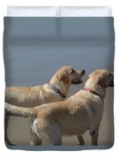 Two Yellow Labs Wait In Anticipation Duvet Cover