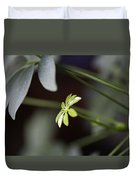 Umbrella Plant Duvet Cover