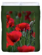 Umbria Poppies Duvet Cover