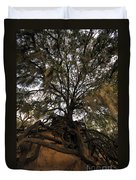 Under Spanish Moss Duvet Cover by David Lee Thompson