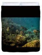 Under The Sea Scape Duvet Cover