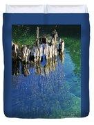 Underwater Cypress Stump Duvet Cover