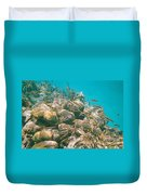 Underwater Photography Duvet Cover