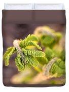 Unfolding Fern Leaf Duvet Cover