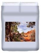 Unique Desert Beauty At Kodachrome Park In Utah Duvet Cover