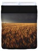United States, Kansas, Summer Thunder Duvet Cover