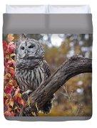 Untitled Owl Duvet Cover