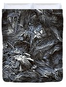 Untitled11-14-09 Duvet Cover