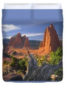 212645-upper Cathedral Valley  Duvet Cover