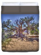 Utah Juniper On The Climb To Delicate Arch Arches National Park Duvet Cover