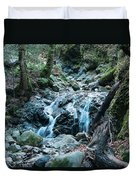 Uvas Canyon Waterfall I Duvet Cover