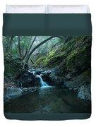 Uvas Canyon Waterfall II Duvet Cover