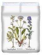 Valerian Flowers, 1613 Duvet Cover