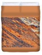 Valley Of Fire Petroglyphs Duvet Cover