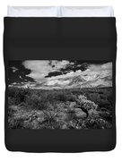 Valley View No.29 Duvet Cover