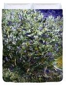 Van Gogh: Lilacs, 19th C Duvet Cover
