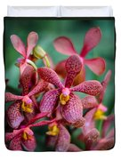 Vanda Orchids Duvet Cover