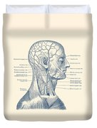 Vascular And Muscular System - Vintage Anatomy Print Duvet Cover