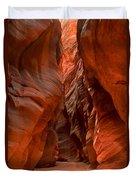 Vermilion Cliffs Narrows Duvet Cover