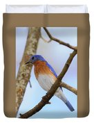Very Bright Young Eastern Bluebird Perched On A Branch Colorful Duvet Cover