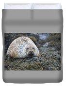Very Chubby Harbor Seal Duvet Cover