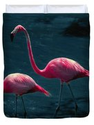 Very Pink Flamingos Duvet Cover