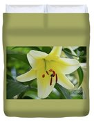 Very Pretty Single Blooming Yellow Daylily Flower Duvet Cover