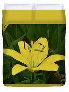 Vibrant Yellow Lily Thriving In The Spring Duvet Cover