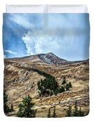 View From Guanella Pass Road Duvet Cover