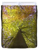 View To The Top Of Beech Tree Duvet Cover