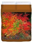 Vine Maple In Oregon Duvet Cover