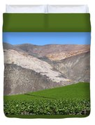 Vineyards In The Atacama Desert Chile Duvet Cover
