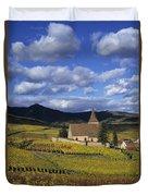 Vineyard In Alsace, France Duvet Cover