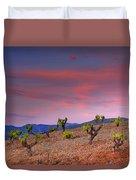 Vineyards At Sunset In Spain Duvet Cover