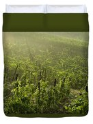 Vineyards Shrouded In Fog Duvet Cover