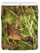 Virginia Rail Duvet Cover