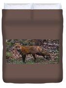 Virginian Red Fox Duvet Cover
