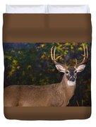 Virginian White Tail Buck Duvet Cover