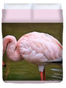 Wading In Water Duvet Cover