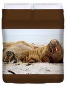 Walrus Family Duvet Cover