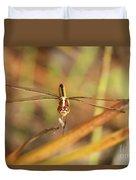 Wandering Glider Dragonfly Duvet Cover