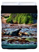 Warm And Fuzzy  Duvet Cover by Douglas Barnard