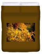 Warm Fall Colors Duvet Cover