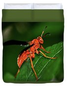 Wasp On A Leaf 001 Duvet Cover