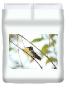 Watchful Hummingbird Duvet Cover