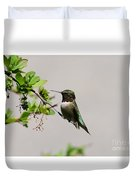 Watchful Male Hummer Duvet Cover