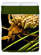 Water Beetle Brooding Eggs Duvet Cover